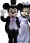 供应制作卡通服装,动漫服装,人偶服装,表演服装米老鼠